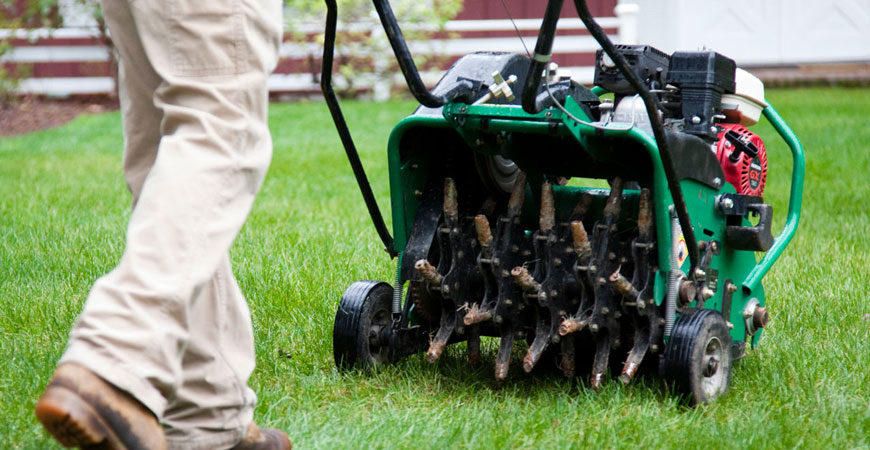 landscaping-wp-themes-spring-and-fall-cleanup-2-870×450